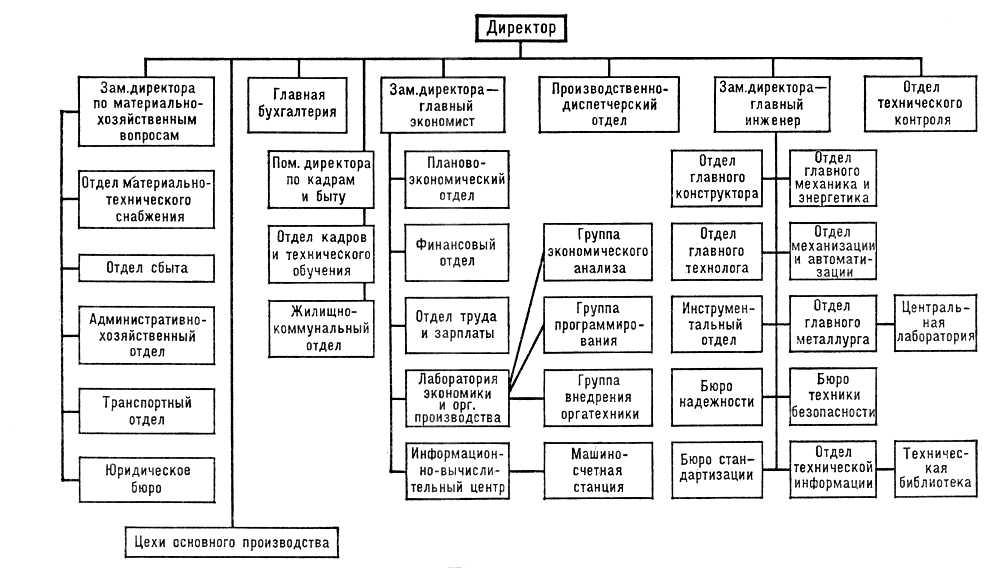 Схема руководитель организации
